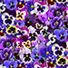 New for Lovely Pansies