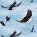 Wings of Pride