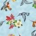 Hummingbird Vision