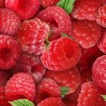 154-raspberry1