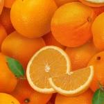261-orange