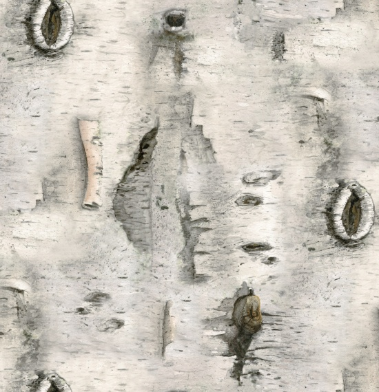 4324 Gray Landscape Medley Fabric Collections Elizabeth