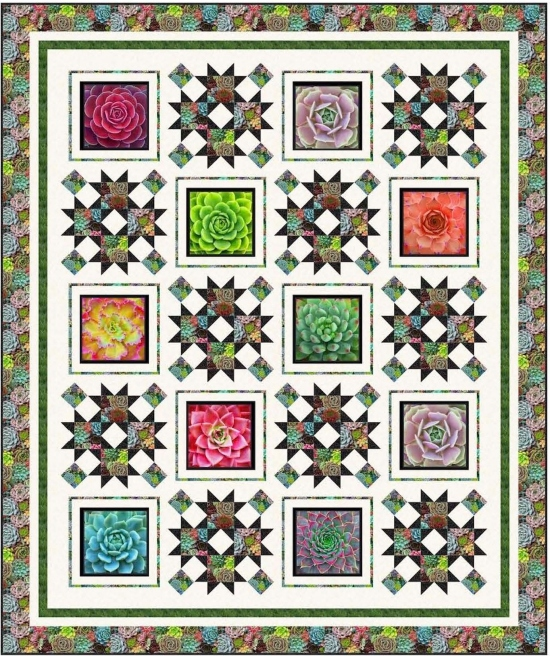 Succulent Garden by Pine Tree Country Quilts