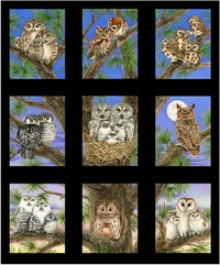 Owl Families by Tracy Lizotte